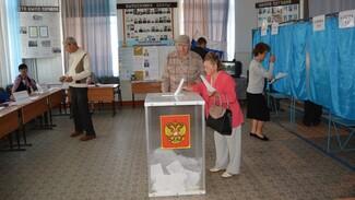В Россошанском районе проголосовали свыше 29 тыс избирателей