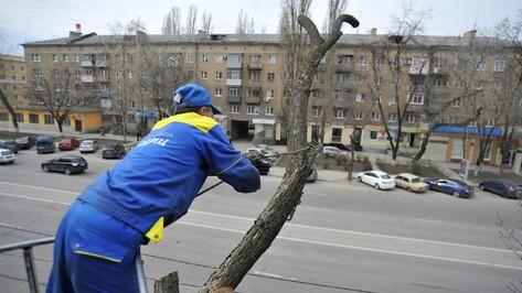 В Воронеже движение по участку улицы Кольцовской ограничат 28 мая