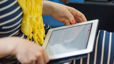 В населенных пунктах Семилукского района появится 16 точек доступа Wi-Fi