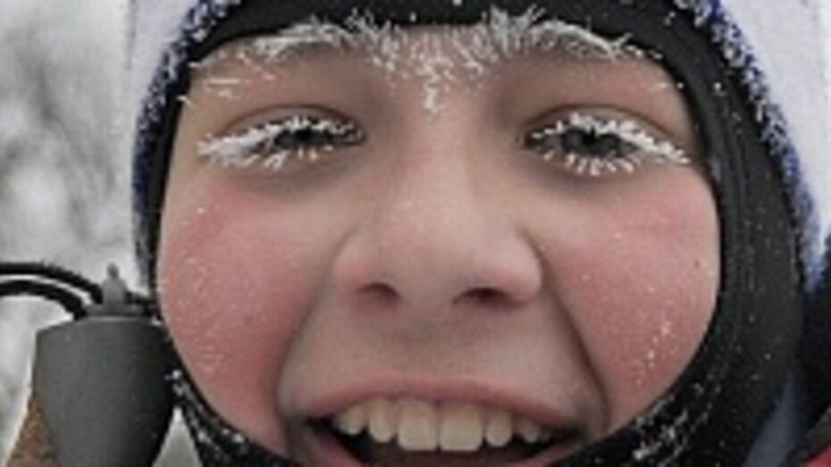 В воронежских школах пока не планируют отменять занятия из-за холодов