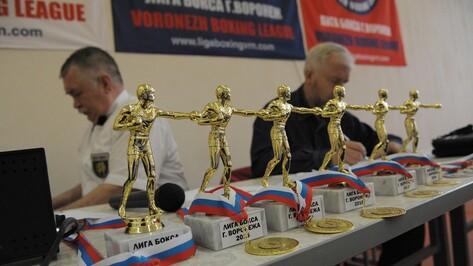 Воронежские боксеры победили на всероссийских соревнованиях