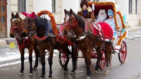 Опрос РИА «Воронеж». Кто популярнее – Дед Мороз или Санта Клаус