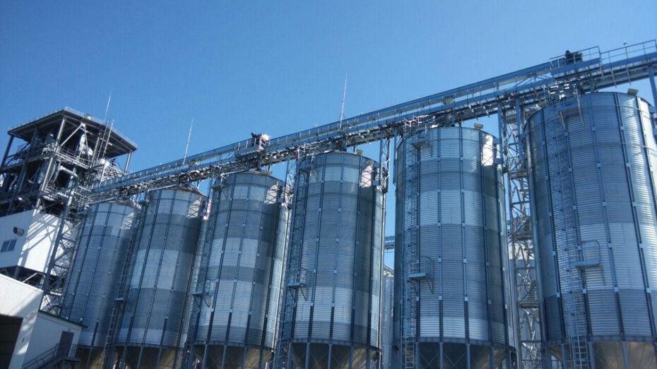 Комбикормовый завод появится в Воронежской области в 2019 году