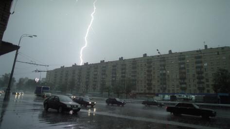 Жителей Воронежской области предупредили о ливнях и граде