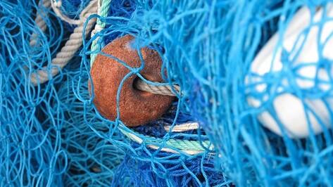 В Семилуках рыбака-браконьера оштрафовали на 2 тыс рублей