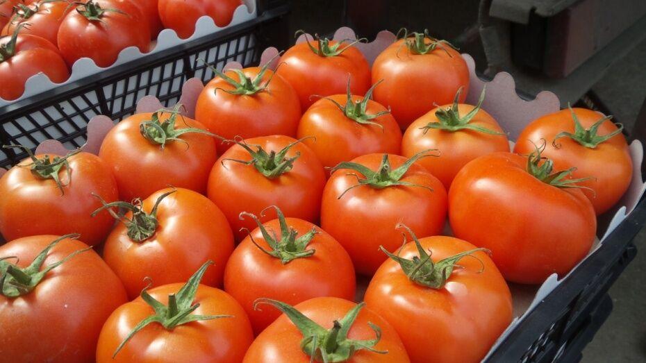 Прокуратура нашла на воронежском рынке 100 кг турецких помидоров