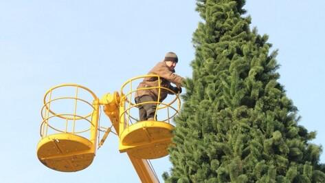 Первая районная новогодняя елка откроется в Воронеже 25 декабря