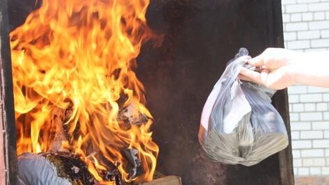 В Воронеже наркополицейские сожгли 7,5 кг вещдоков