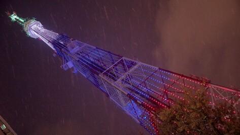 Триколор засияет на воронежской телебашне в честь Дня России
