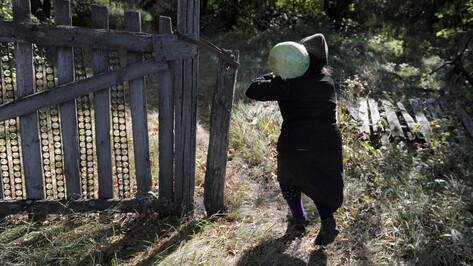 Заброшенные хутора: как пустеют воронежские деревни. Козловский