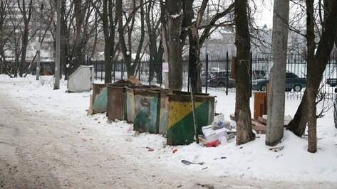 Воронежцы вышли на фотоохоту за нарушениями