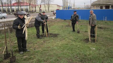 Кантемировцы высадили деревья у памятника танку