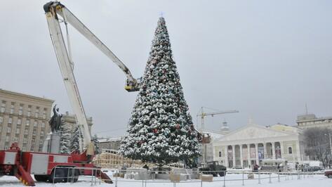 Новогоднюю елку на площади Ленина в Воронеже нарядят к 15 декабря