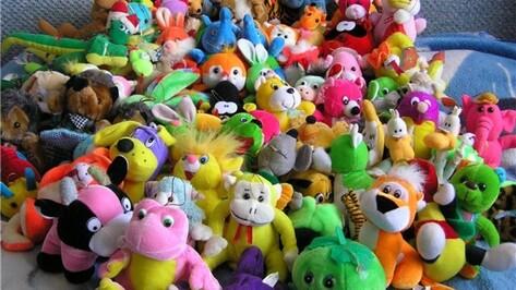 В Борисоглебске объявили сбор игрушек и книг для благотворительной акции