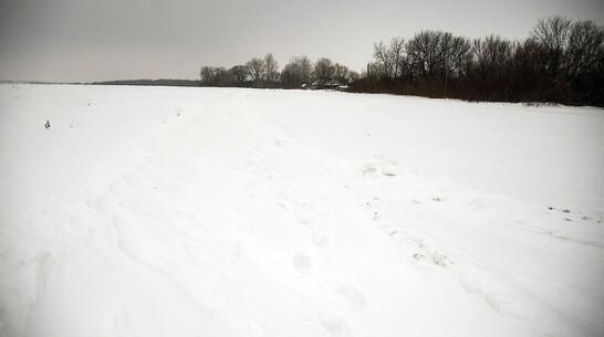 Пропавшего в конце 2020 года парня в пижаме нашли мертвым в поле под Воронежем