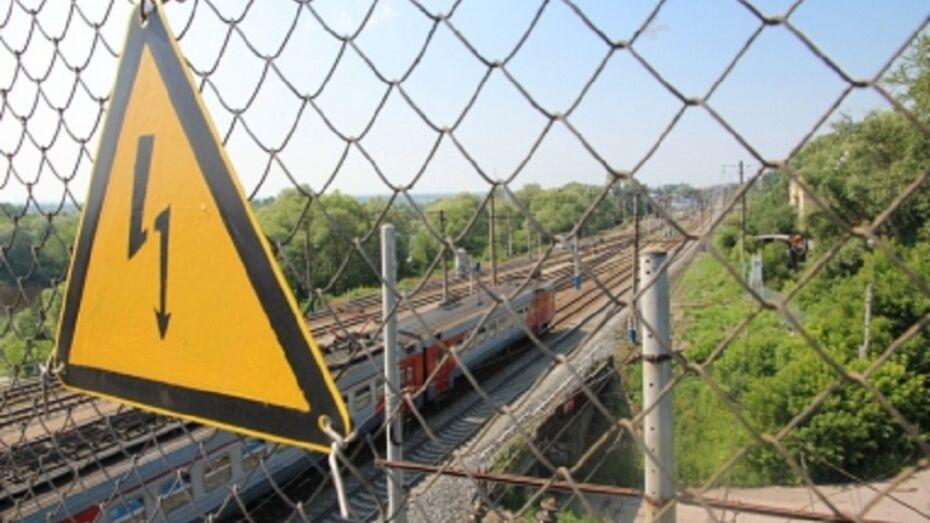 СК разберется в ЧП с пострадавшим мальчиком на железной дороге под Воронежем