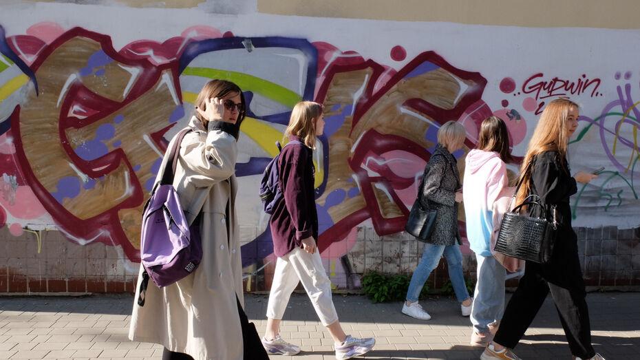 В Воронеже нашли более 100 локаций для экскурсий по стрит-арту