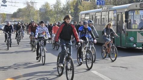 В этом году в Воронеже велодорожки проложат вместо рельсов