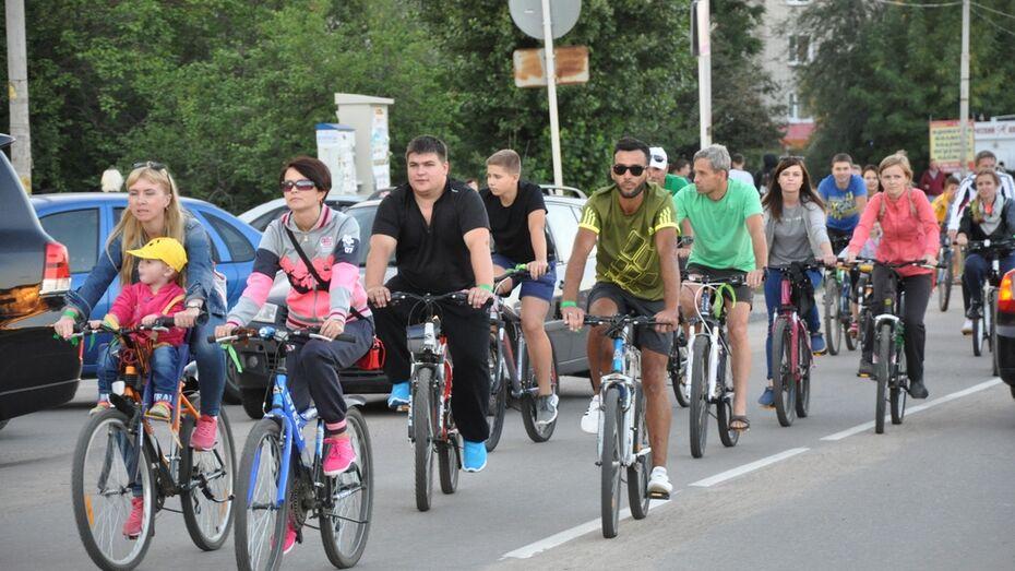 В Павловске впервые пройдет «Велосипедная лихорадка»