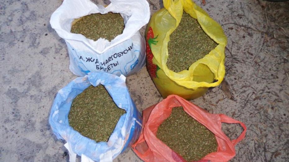 В Воронежской области наркополицейские нашли в «Ниве» более 3 кг марихуаны