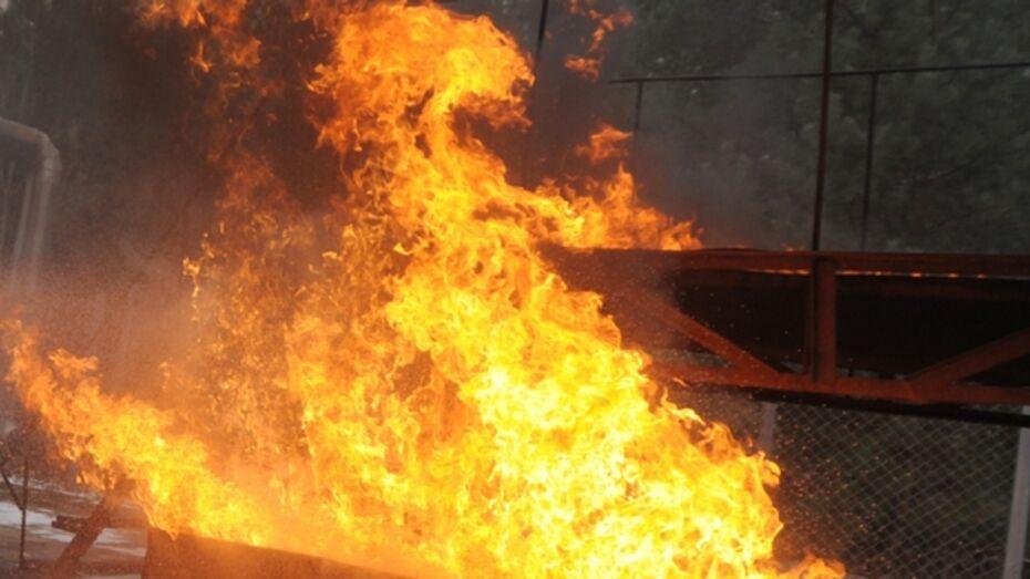 В Воронеже хулиган пытался поджечь «Фиат»