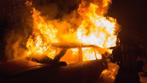 Уничтоживший два автомобиля пожар в Воронеже попал на видео
