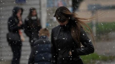 Метеорологи пообещали снег в конце рабочей недели в Воронеже