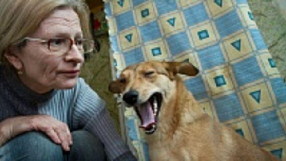 Воронежская пенсионерка учит парализованных собак заново ходить и даже бегать