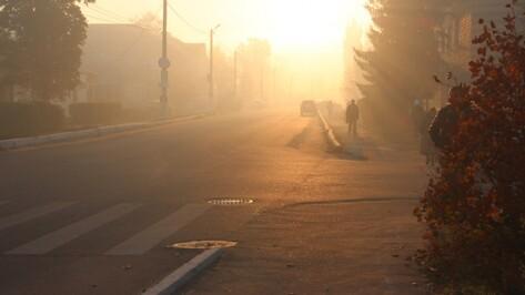 Спасатели предупредили об аномальной жаре в Воронежской области