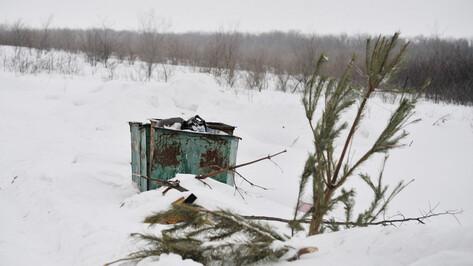 ГЖИ проконтролирует плату жителей Воронежской области за вывоз мусора