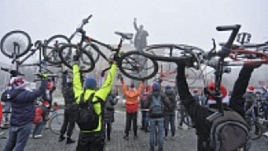 Велоактивистов из Воронежа пригласили в Петербург поделиться опытом на международной конференции
