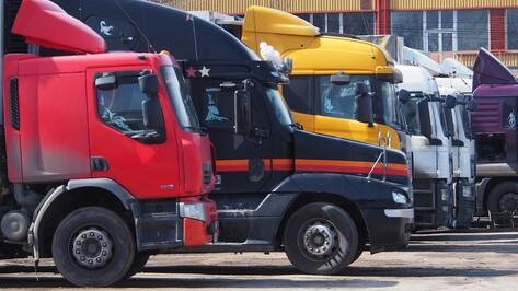 Воронежская область на 18% увеличила импорт из стран дальнего зарубежья