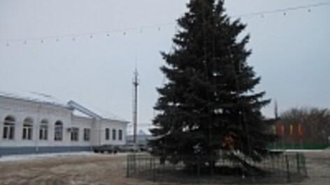 В Подгоренском районе установили главную новогоднюю елку