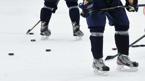 Хоккейная «Россошь» проиграла новомосковской «Академии Михайлова»
