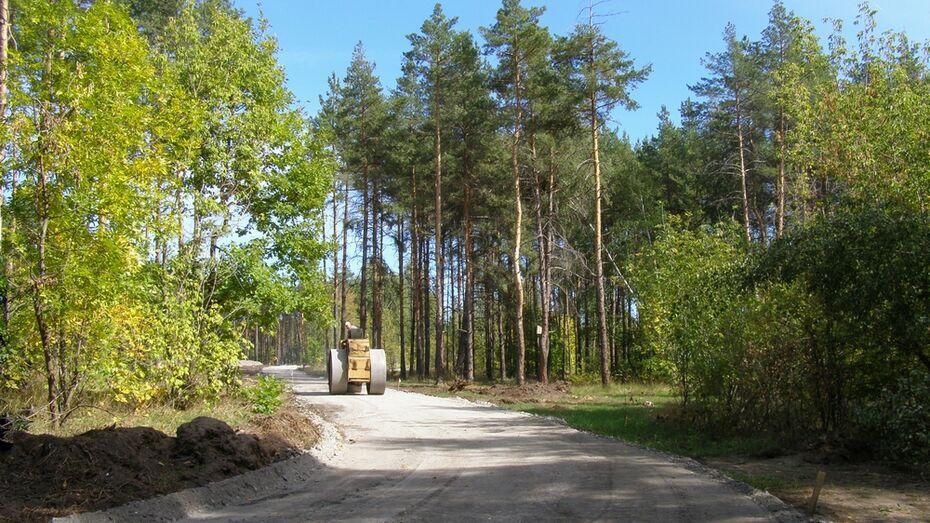 В Лисках  лыжероллерную трассу построят к 1 октября