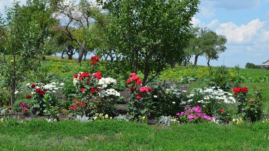 В семилукском селе пройдет районный фестиваль цветов