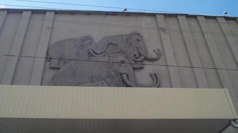 Музей-заповедник «Костенки» под Воронежем опубликовал план летних выставок