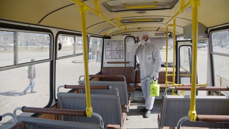 Студенты ВГТУ предложили «облучать» пассажиров автобусов для защиты от вирусов