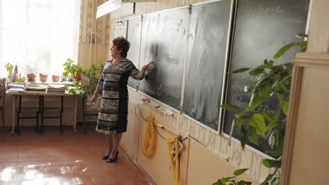 Сельским учителям в Воронежской области оплатят съем жилья