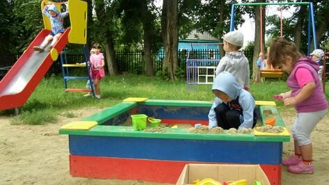 Во всех поселениях Нижнедевицкого района появятся новые детские площадки