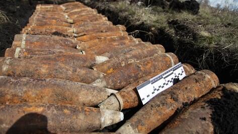 В Рамонском районе поисковики нашли противотанковые мины и артиллерийские снаряды