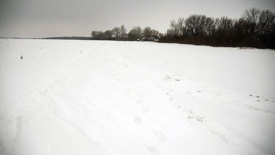 Пропавшего 50-летнего мужчину нашли мертвым в дачном поселке под Воронежем