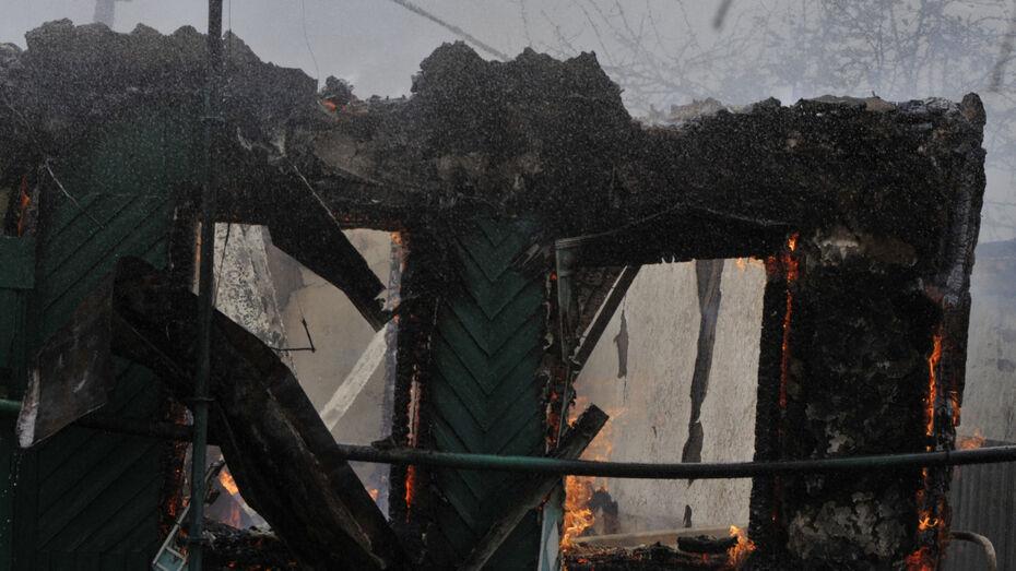 Огонь уничтожил около 20 построек в селе Воронежской области