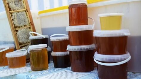 Мед в России подорожает в два раза