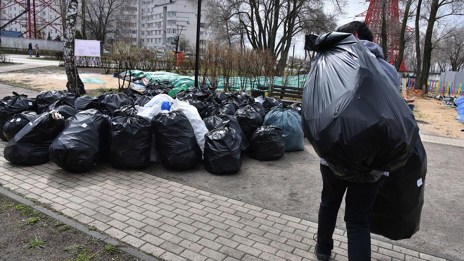 Во время Всемирного дня чистоты в Воронежской области собрали 320 мешков отходов
