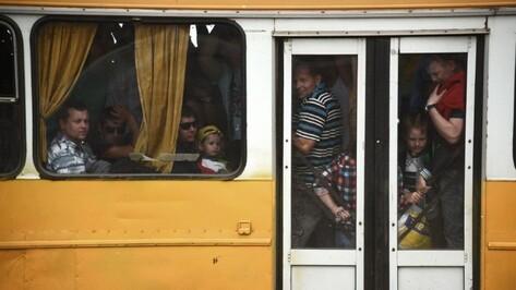 В Воронежской области усилили контроль в сфере перевозок пассажиров