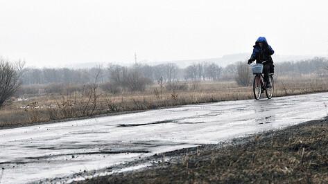 Велосипедист получил 360 тыс рублей от виновника ДТП в Воронежской области