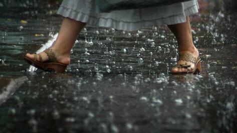 Бесплатные экскурсии по столлевским местам в Воронеже перенесли из-за дождя