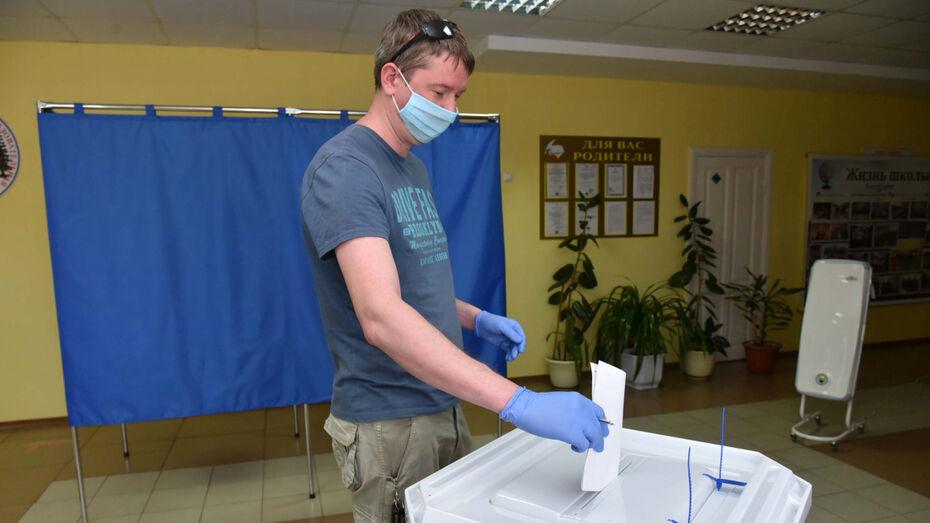 Воронежский облизбирком ожидает явку в 65% на общероссийском голосовании