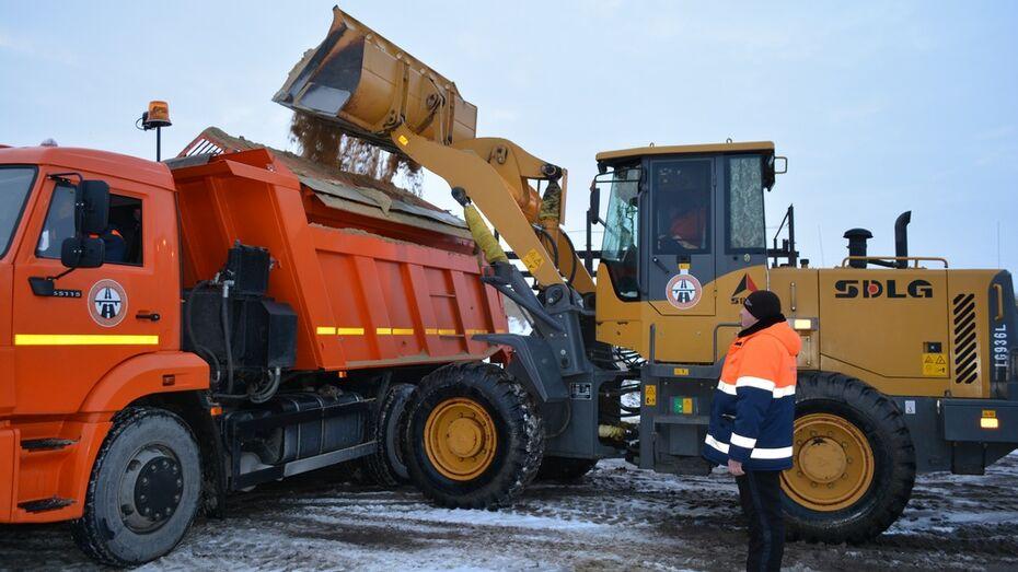 За первые 10 дней января в  Нижнедевицком районе высыпали на дороги двойную норму  песка